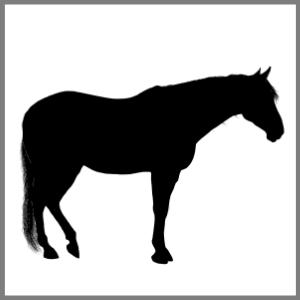 Silhuet hest kæledyr